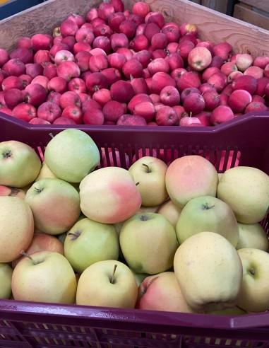 Pomme à croquer ou à cuire - 5kg